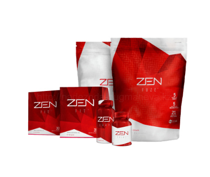 программа ZEN 8 Project