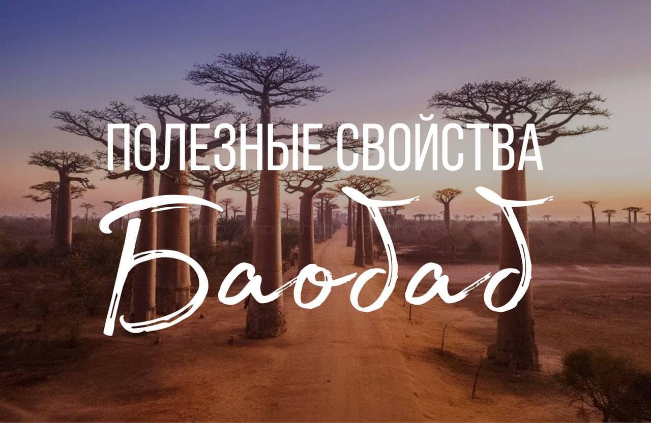 Полезные свойства Баобаб