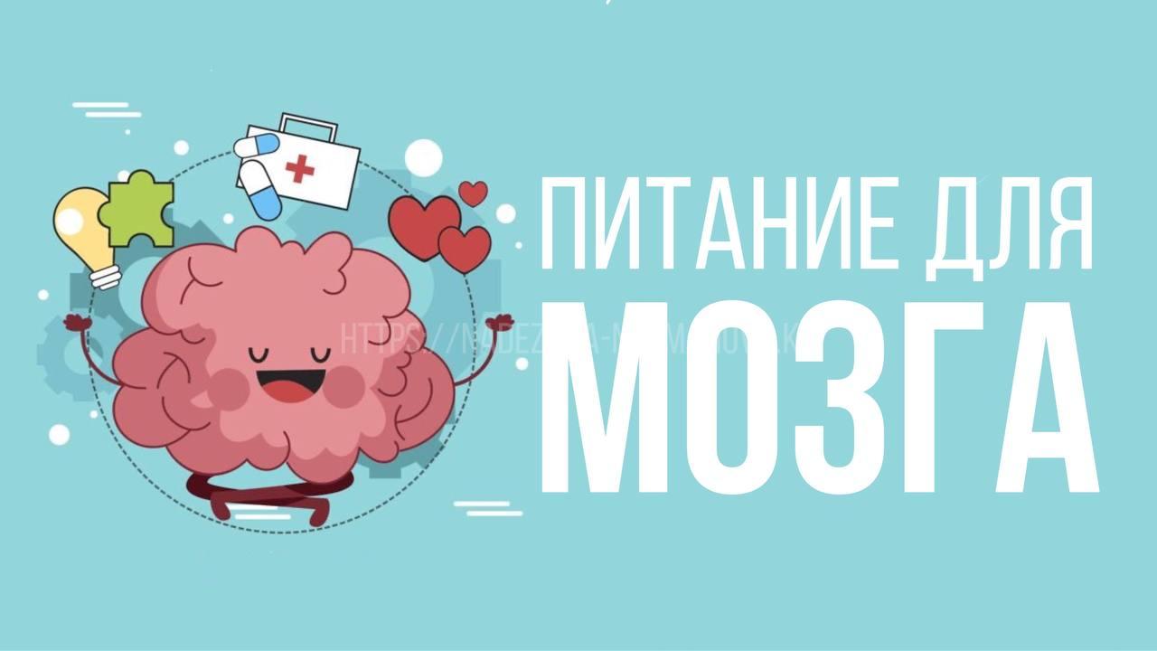Питание - еда для мозга